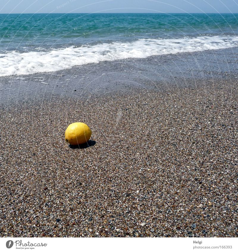 lost property Colour photo Exterior shot Deserted Copy Space right Copy Space bottom Day Shadow Sunlight Worm's-eye view Food Fruit Vacation & Travel Summer