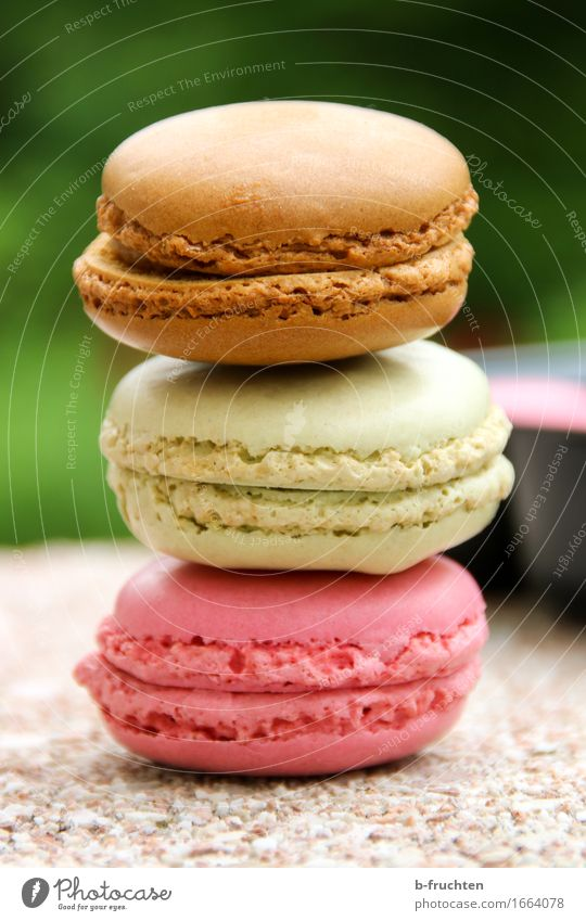 Three colorful macarons stacked Food Candy Stone Brown Multicoloured Green Violet Sweet Stack Macaron Baked goods Cookie Alluring Colour photo Exterior shot