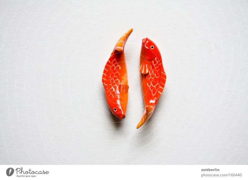 Love Wood Together Pair of animals Decoration In pairs Fish Romance Jewellery Copy Space Astrology Relationship Adornment Goldfish Esotericism