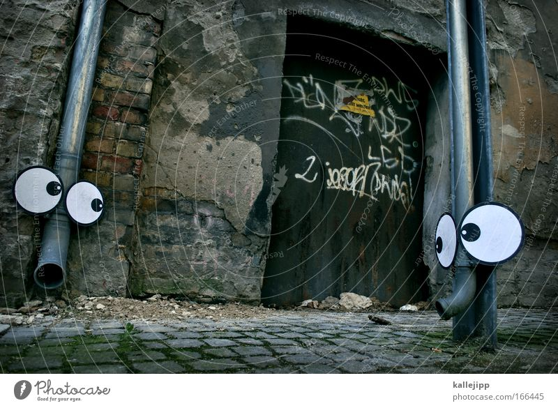 Love Eyes Animal Gray Wall (barrier) Door Communicate Romance Animal face Longing Zoo Face Comic Loyalty Elephant Literature