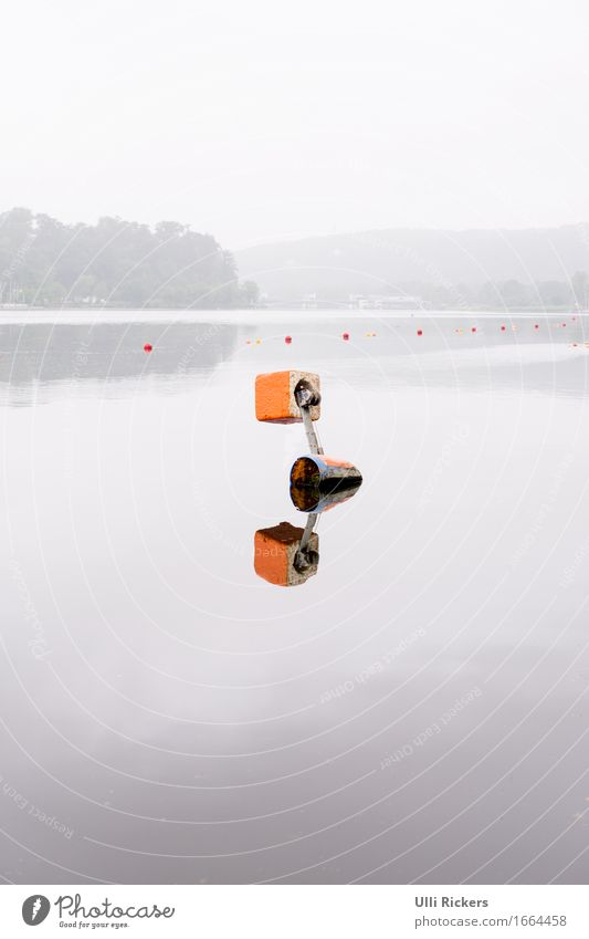 mirroring Rowing Nature Summer Forest Hill Lake River Stone Swimming & Bathing Float in the water Water Orange Colour photo Exterior shot Copy Space top