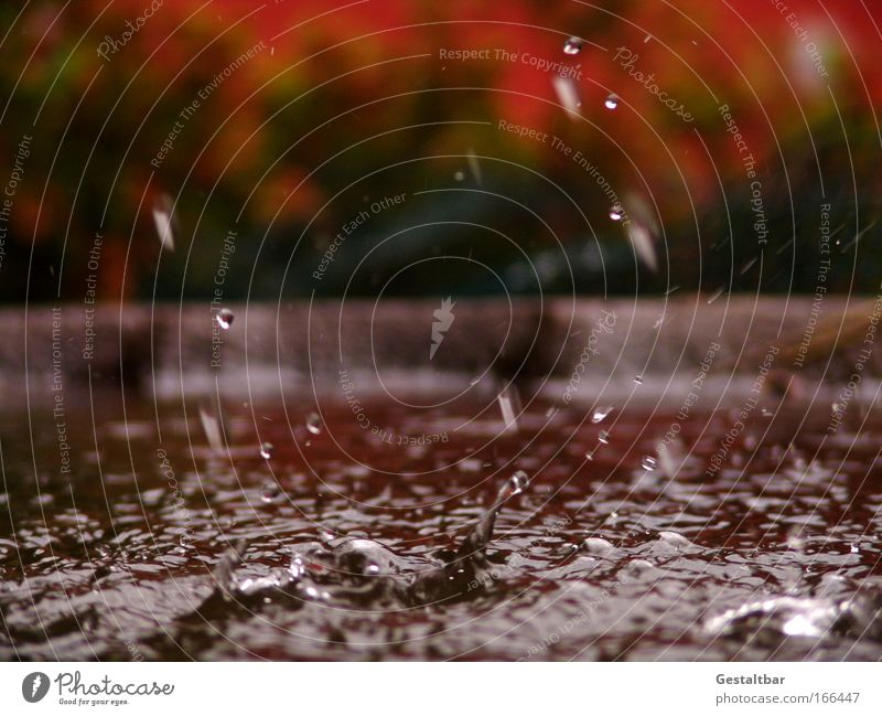 water feature Water Drops of water Brown Red Sadness Esthetic Movement Uniqueness Pure Surface structure Colour photo Exterior shot Detail