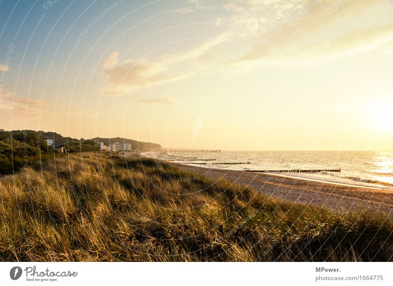 Nature Vacation & Travel Ocean Landscape Relaxation Beach Environment Warmth Meadow Coast Bright Waves Beautiful weather Hill Baltic Sea Bay