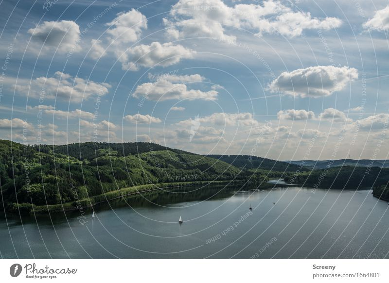 Lake Bigge Nature Landscape Water Sky Clouds Spring Summer Beautiful weather Hill Lakeside Sauerland Inland navigation Boating trip Sport boats Yacht Sailboat