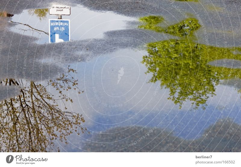 Nature Water Green Blue Plant Gray Lanes & trails Park Rain Concrete Puddle Mirror image Road sign