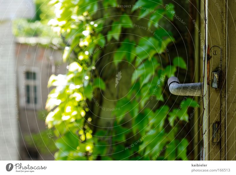 Living in the countryside Colour photo Exterior shot Deserted Copy Space left Contrast Sunlight Shallow depth of field Living or residing Flat (apartment) Door