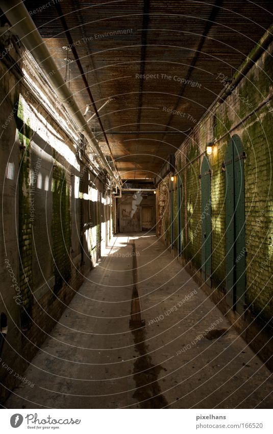 try to build a prison Room Factory Deserted Gate Manmade structures Wall (barrier) Wall (building) Door Wood Brick Old Colour photo Interior shot Light Shadow