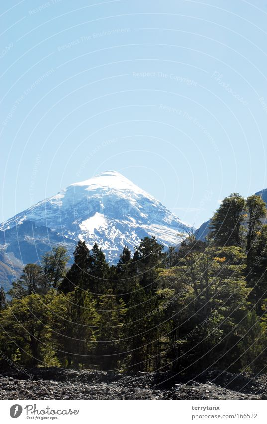 Volano Lanin Patagonia Argentina Sky Nature Tree Vacation & Travel Forest Freedom Autumn Mountain Landscape Idyll Beautiful weather Environmental protection