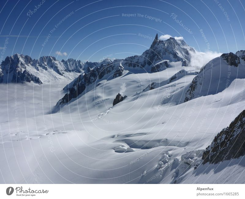 Glacier du Geant Climate change Ice Frost Snow Alps Mountain Dent de Geant Mont Blanc Peak Snowcapped peak Gigantic Cold Dream Loneliness Fear of heights
