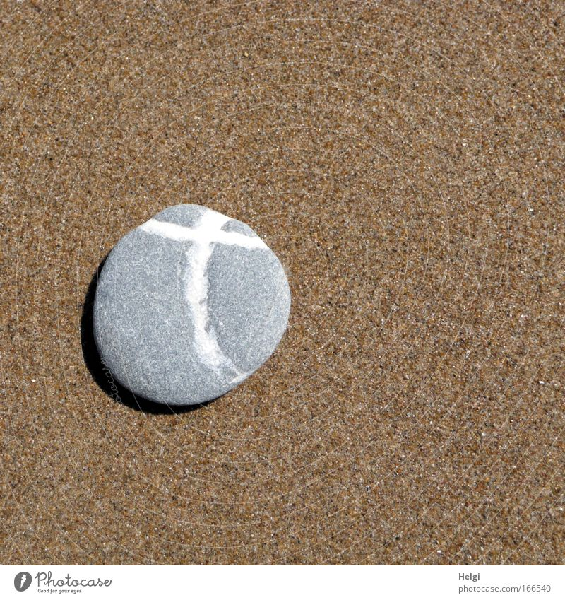 Nature Beautiful White Beach Death Gray Stone Sand Christianity Brown Religion and faith Coast Small Hope Grief Esthetic