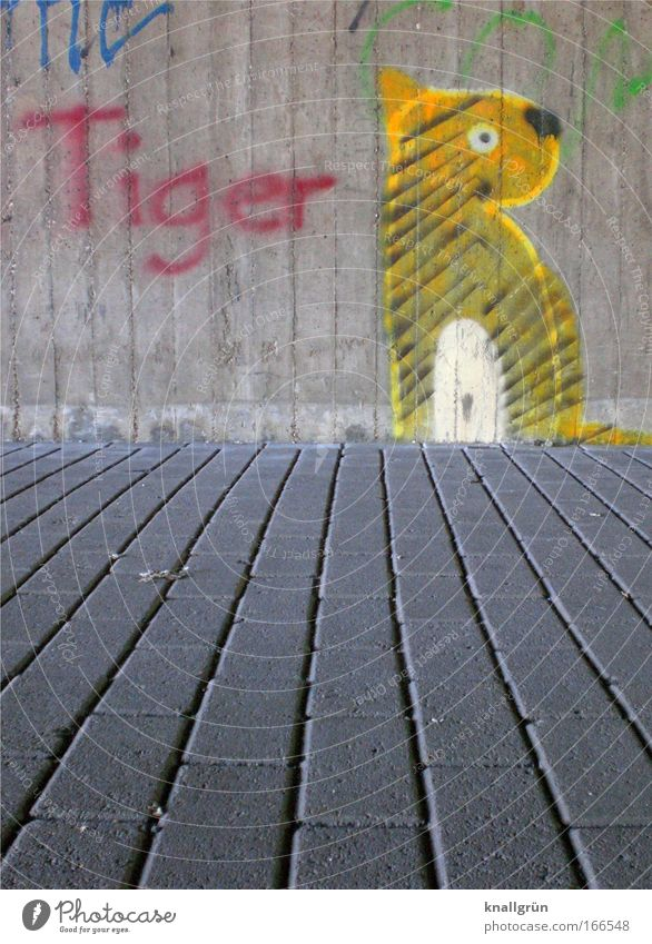 tiger Colour photo Exterior shot Deserted Copy Space bottom Day Graffiti Wall (barrier) Wall (building) Stone Concrete Characters Blue Yellow Gray Red Black