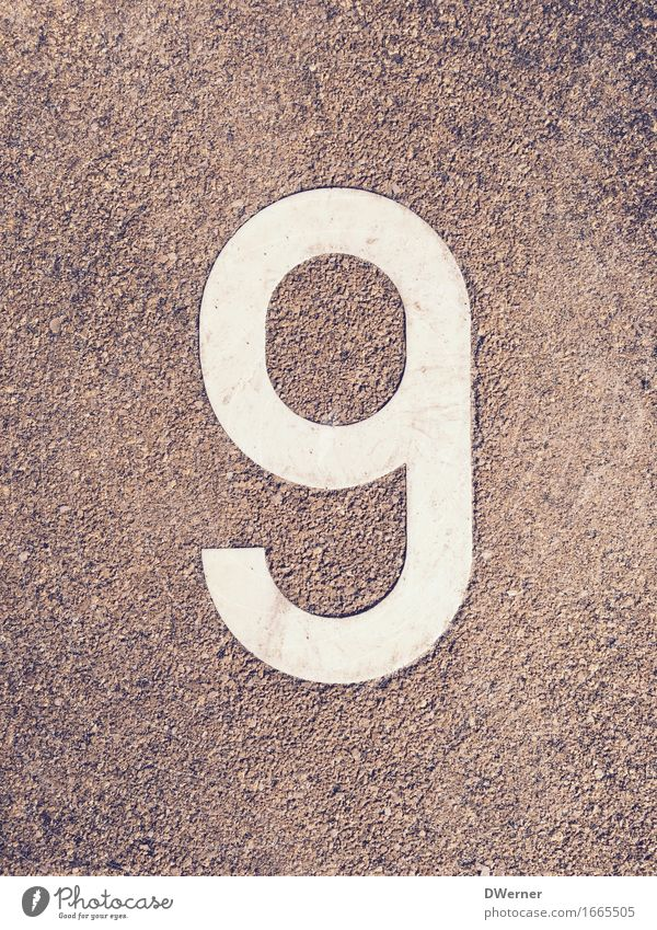 9 Sporting Complex Education Kindergarten Study School building Schoolyard Wall (barrier) Wall (building) Facade Stone Sign Characters Digits and numbers