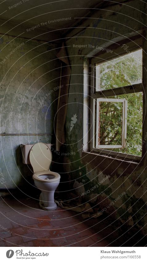 Room with view Toilet Window Bathroom Old Derelict Tumbledown Shabby Decline Rural exodus House (Residential Structure) Ruin Colour Gloomy Distress Vacancy