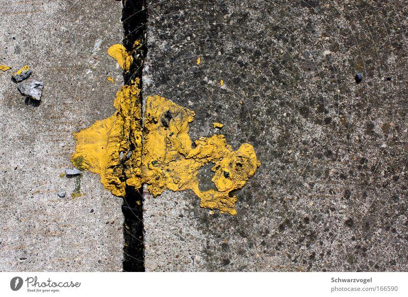 Animal Yellow Colour Gray Stone Dream Bird Concrete Flying Dangerous Wild animal Animal face Creativity Hunting Whimsical