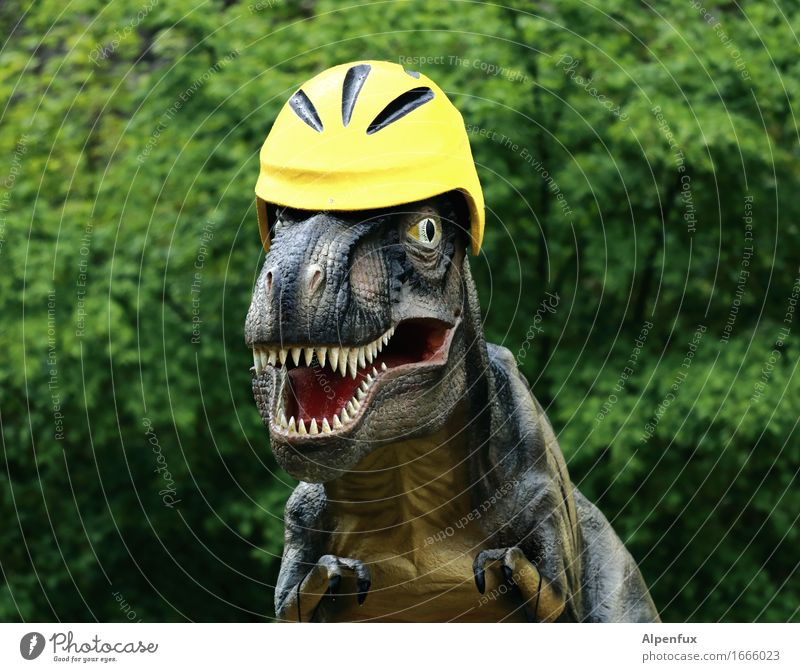 Only with helmet ! Virgin forest Animal tyrannosaurus rex 1 Observe To feed Aggression Threat Funny Safety Fear Adventure Helmet bicycle helmet Set of teeth