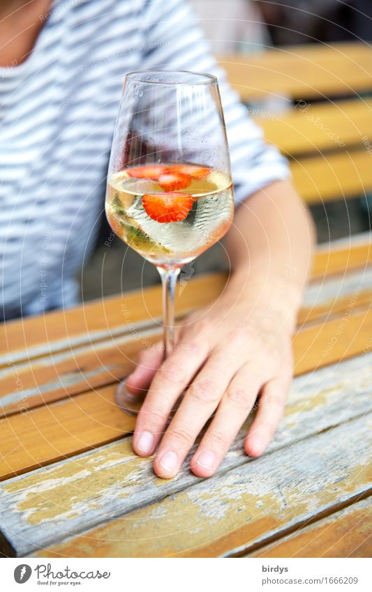time-out Strawberry Beverage Alcoholic drinks Wine Punch Wine glass Lifestyle Well-being Relaxation Garden table Lounge Drinking Feminine Woman Adults Arm Hand