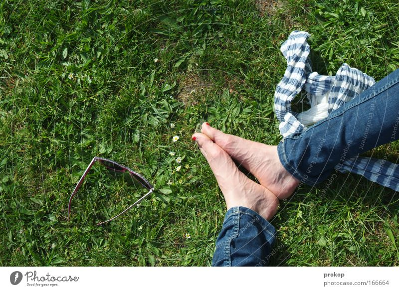 Tag in pak Colour photo Exterior shot Copy Space left Day Shadow Sunlight Bird's-eye view Legs Feet Environment Nature Plant Meadow Sunglasses Scarf Sit Green