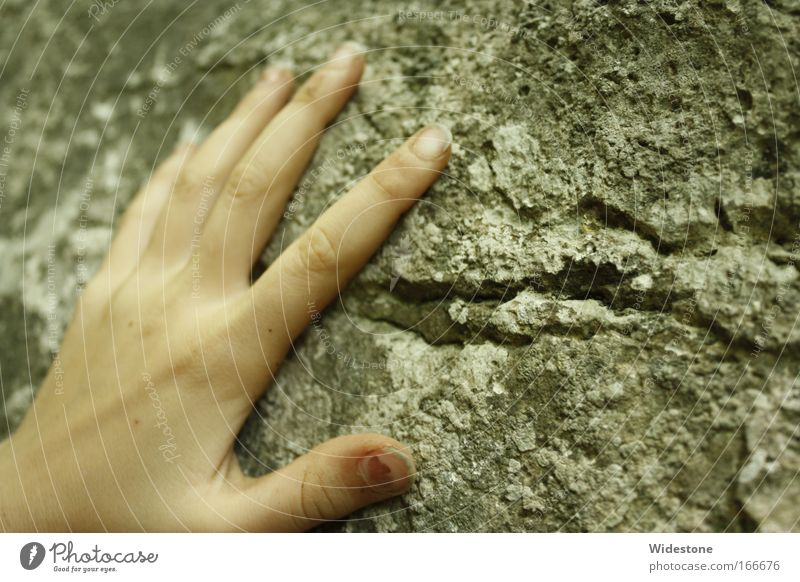 Human being Nature Hand Summer Playing Emotions Stone Moody Rock Infancy Fingers Elements Curiosity Touch Climbing Compassion