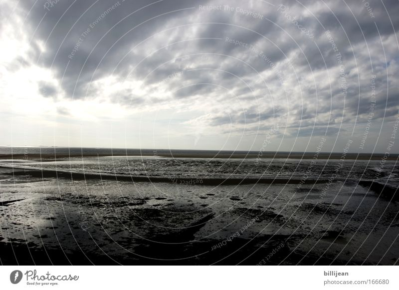 North Sea horizon Colour photo Subdued colour Exterior shot Deserted Copy Space middle Morning Contrast Wide angle Environment Nature Landscape Sand Air Water