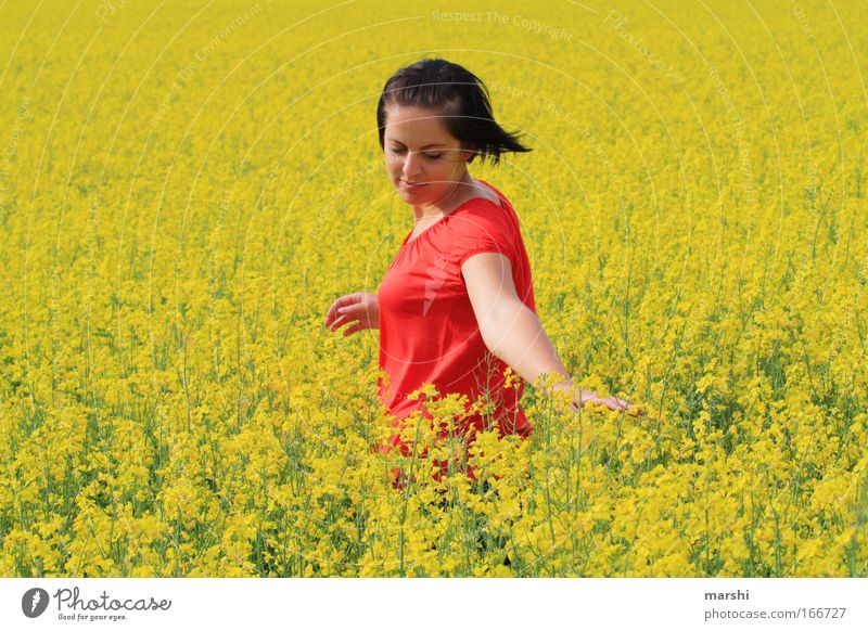 yellow feeling Joy Happy Leisure and hobbies Human being Feminine 1 18 - 30 years Youth (Young adults) Adults Nature Landscape Spring Summer Touch Movement