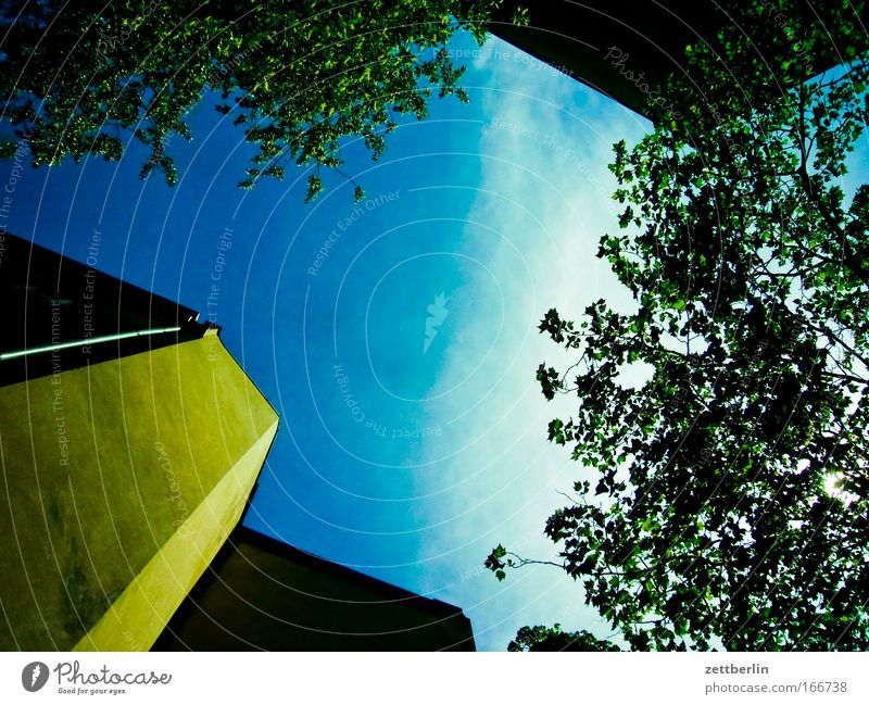 Sky Green Tree Plant Summer Clouds Leaf House (Residential Structure) Wall (barrier) Building Wheel Backyard Barrier Copy Space Federal State of Tyrol Behind