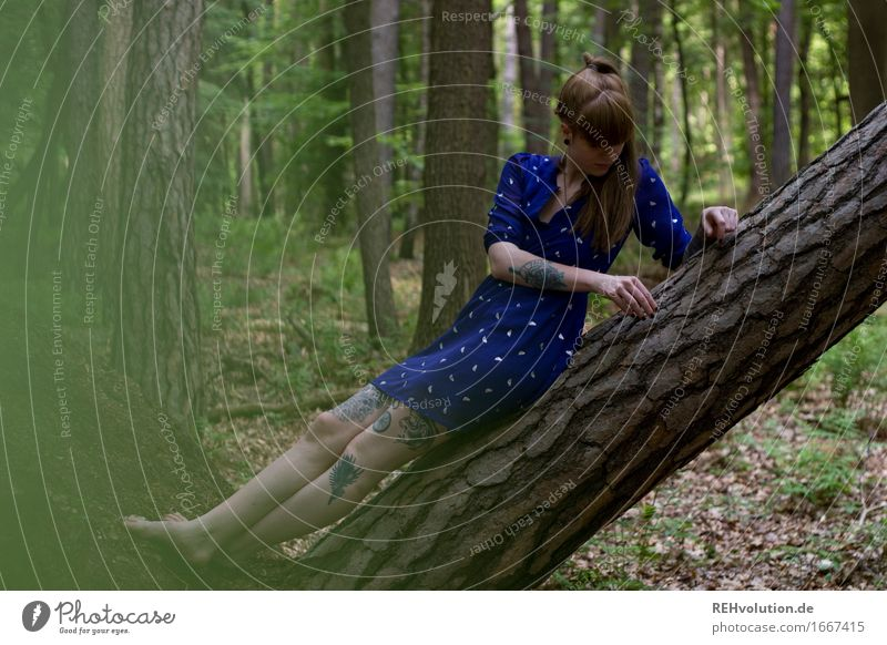 Carina in the forest Human being Feminine Young woman Youth (Young adults) Woman Adults 1 18 - 30 years Environment Nature Plant Tree Forest Fashion Dress