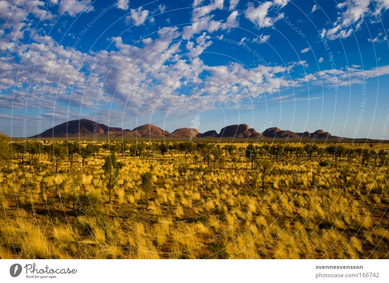 Kata Tjuta Colour photo Exterior shot Deserted Copy Space left Copy Space right Copy Space top Copy Space bottom Copy Space middle Day Panorama (View)