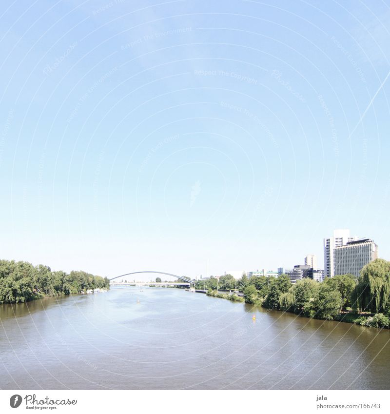 [PC-Usertreff Ffm]: Main river bank Colour photo Exterior shot Day High-key Wide angle Sky Plant Park River bank Frankfurt House (Residential Structure)