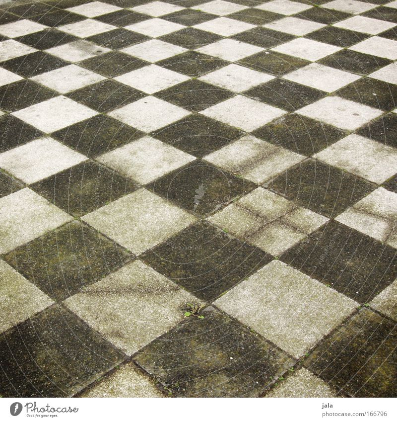 chequered II Subdued colour Exterior shot Deserted Day Ludwigshafen Places Sharp-edged Green Black White Pattern Chess Checkered Tile Concrete Stone Sidewalk