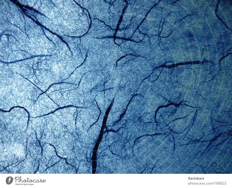 Nature Blue Dark Cold Style Dream Art Background picture Design Environment Crazy Paper Modern Fantastic Science & Research Living thing