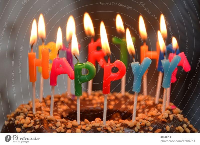 Festive celebrations Candle Emotions Moody Joy Happy Happiness Contentment Joie de vivre (Vitality) Enthusiasm Euphoria Optimism Success Love Infancy Birthday