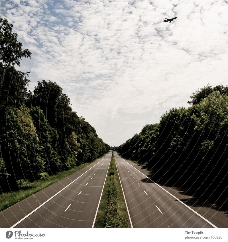 Vacation & Travel Loneliness Street Forest Sadness Airplane Road traffic Flying Horizon Empty Bridge Aviation Dangerous Driving Threat Longing