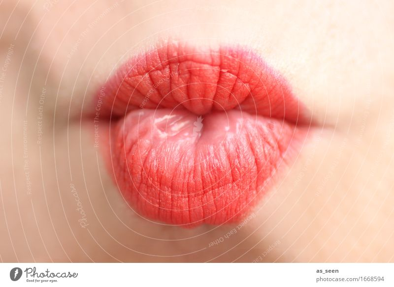 Just a kiss Lifestyle Beautiful Lipstick Senses Valentine's Day Wedding Feminine Mouth 1 Human being Kissing Cool (slang) Eroticism Happiness Bright