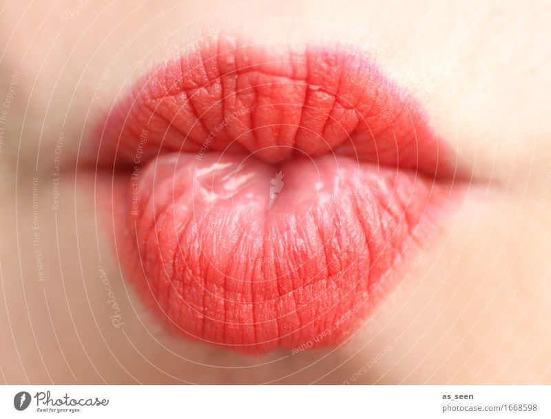 red lips Lifestyle Beautiful Personal hygiene Cosmetics Lipstick Well-being Valentine's Day Wedding Feminine Mouth 1 Human being Kissing Esthetic Eroticism