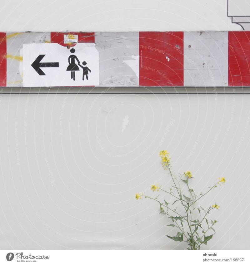 Child Plant Flower Relaxation Wall (building) Grass Wall (barrier) Family & Relations Together Going Signs and labeling Mother Stripe Bushes Signage
