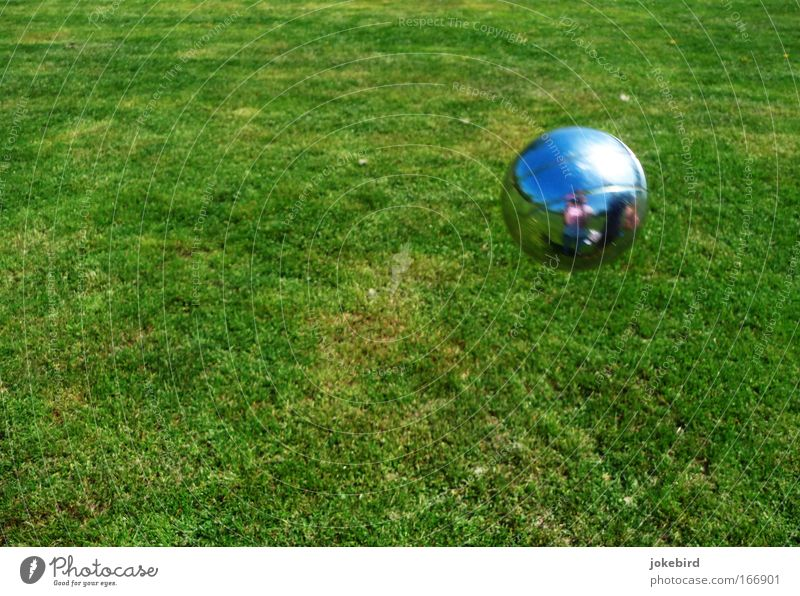 I see myself Joy Leisure and hobbies Playing Garden Boules Sky Summer Beautiful weather Grass Meadow Park Mirror Metal Sphere Relaxation Together Green Silver