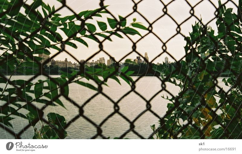 central fence New York City Central Park Fence Green High-rise Water