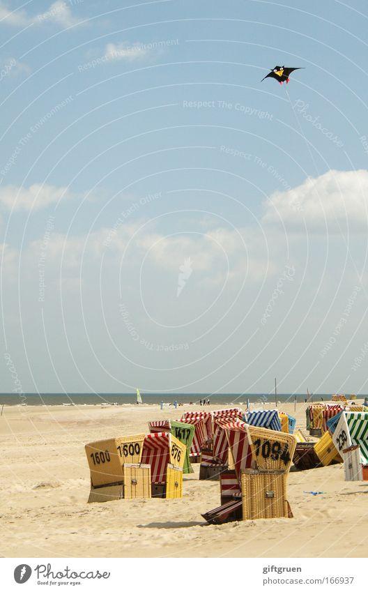 Sky Sun Ocean Summer Joy Beach Vacation & Travel Clouds Relaxation Above Coast Wind Flying Horizon Trip