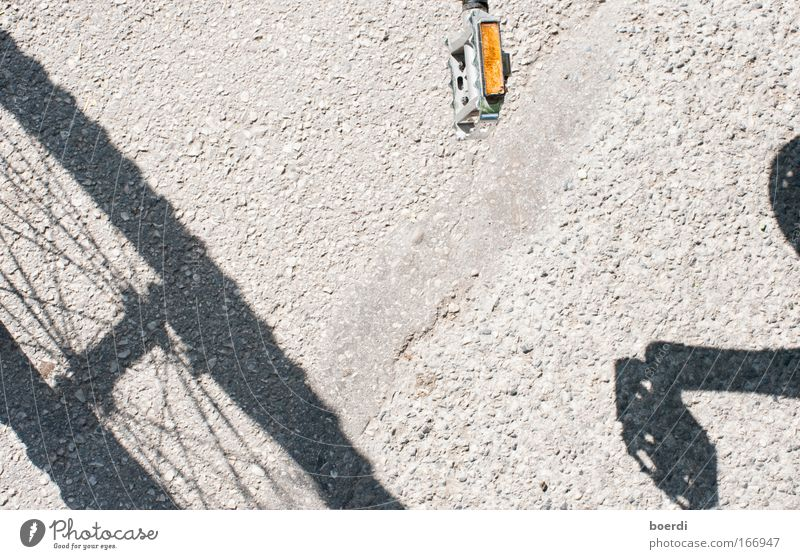 Accede Bicycle Transport Means of transport Passenger traffic Vehicle Movement Driving Uniqueness Sustainability Positive Round Gray Climate Mobility Thrifty