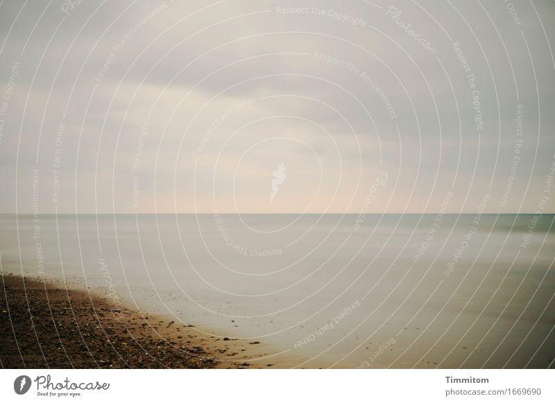Nature Vacation & Travel Water Calm Beach Environment Natural Stone Sand Horizon Esthetic Serene North Sea Denmark