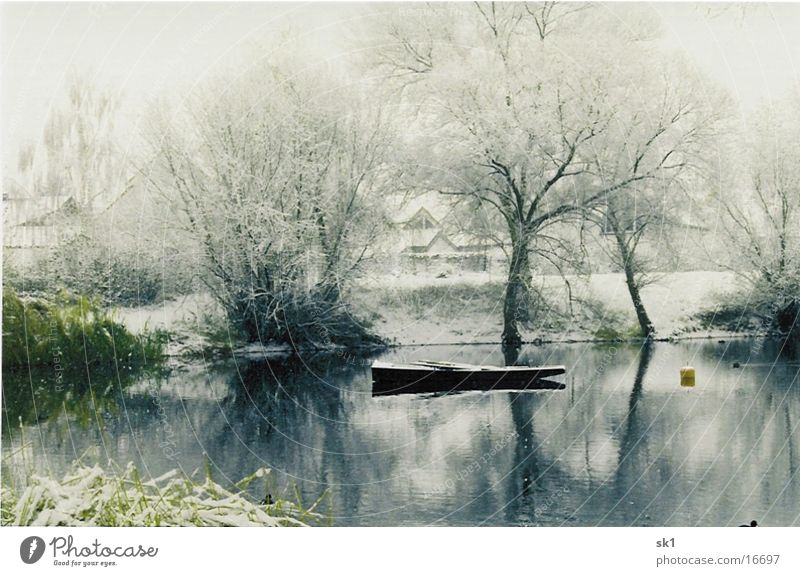Winter at the lake Lake Tree Watercraft Green Calm Cold Snow Idyll Motor barge