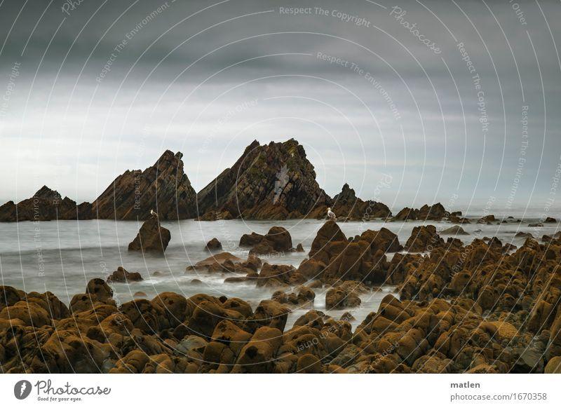 Sky Summer Ocean Landscape Clouds Beach Dark Coast Gray Brown Rock Horizon Weather Sit Climate Bad weather