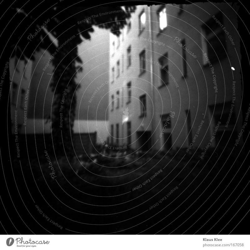 THE NOISE GOES AROUND . Black & white photo Exterior shot Experimental Deserted Copy Space bottom Shadow Silhouette Blur Elegant Listen to music New Media Tree