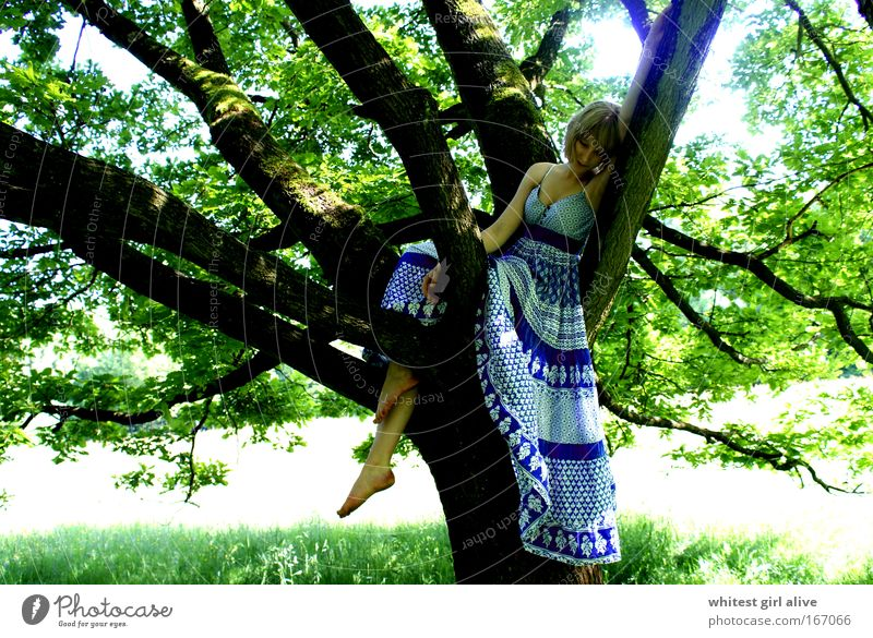 new love grows on trees. Colour photo Exterior shot Day Central perspective Downward Human being Feminine Young woman Youth (Young adults) Think Wait Emotions