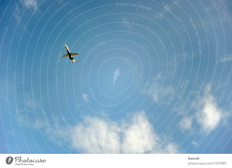 Sky Vacation & Travel Far-off places Freedom Flying Trip Beginning Airplane Speed Aviation Future Infinity Airplane takeoff Direction Upward Anticipation