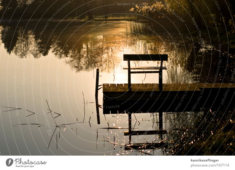 Nature Water Summer Landscape Lake Moody Bench Beautiful weather Lakeside Common Reed Footbridge Fishing (Angle) Sunrise Sunset