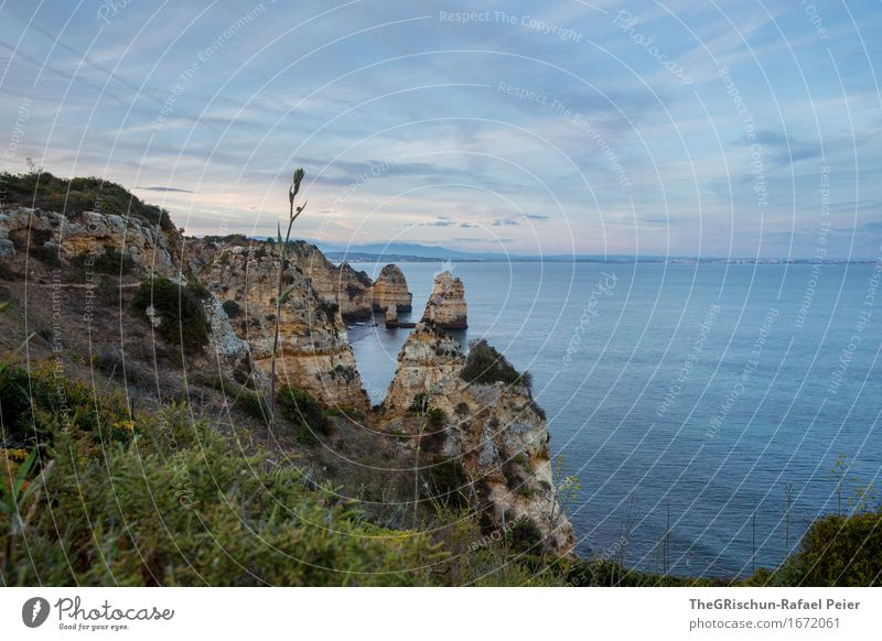 Algarve Environment Nature Landscape Sky Spring Blue Brown Gray Green Vacation & Travel Ocean Cliff Water Portugal Grass Moody Colour photo Exterior shot