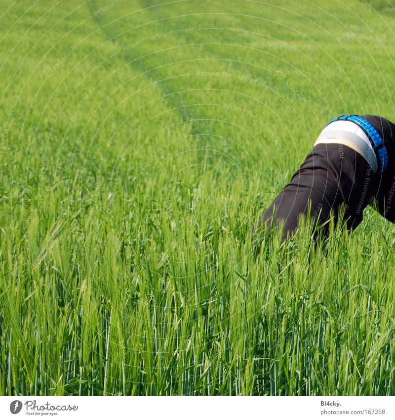Human being Man Youth (Young adults) Adults Grass Spring Field Back Masculine Exceptional Bottom Whimsical Hide Strange Young man Wheat