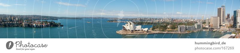 Sydney Panorama Colour photo Exterior shot Day Light Sunlight Bird's-eye view Long shot Panorama (View) Wide angle Looking Vacation & Travel Tourism