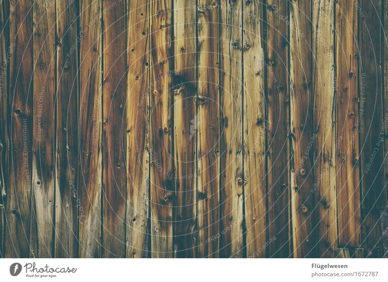 Wood background [2] Forest Logging trucks Wood effect Wooden board Chopping board Wooden wall Wall (building) Parquet floor Floor covering Beech tree Oak tree